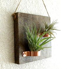 Barn Board Wall Planter Class @ Vines & Rushes Winery        