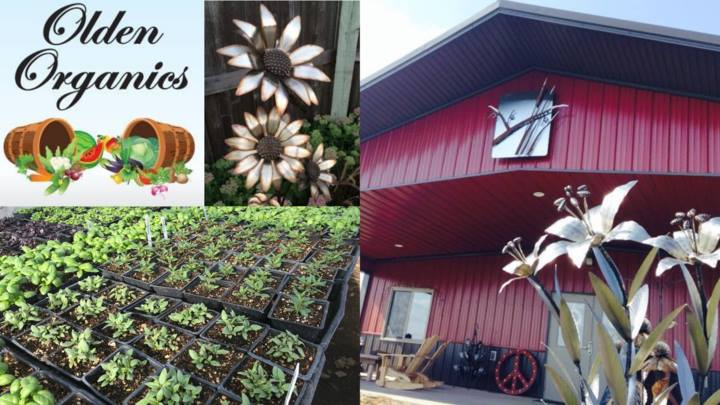 Kirk Yazel Sculptures & Olden Organics at the Winery @ Vines & Rushes Winery