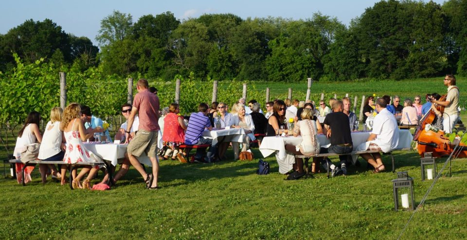 August Farmer's Table Wine & Beer Pairing Dinner @ Vines & Rushes Winery | Ripon | Wisconsin | United States