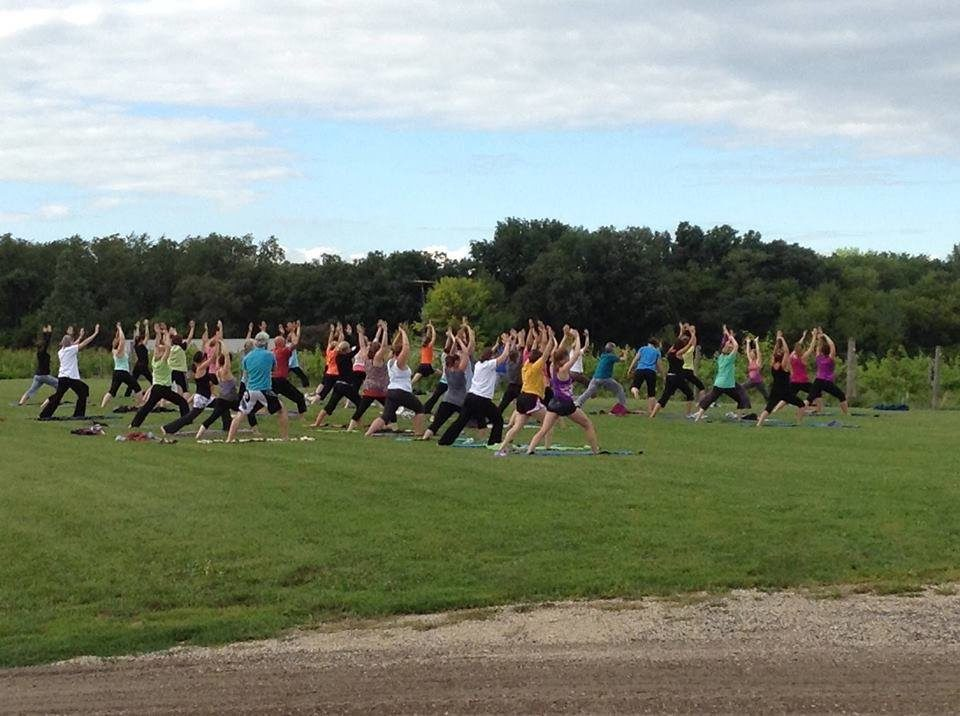 Yoga in the Vineyard @ Vines and Rushes Winery | Ripon | Wisconsin | United States