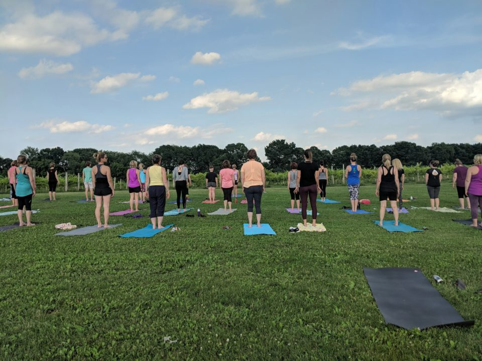 Yoga in the Vineyard @ Vines & Rushes Winery